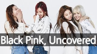 'BLACKPINK' (New YG Girl Group) Uncovered 블랙핑크 [ENG SUB]
