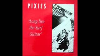 Pixies - I'm Amazed (Live at Gloucester Leisure Centre)