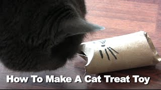 DIY Cat toys - How To Make a Cat Treat Toy
