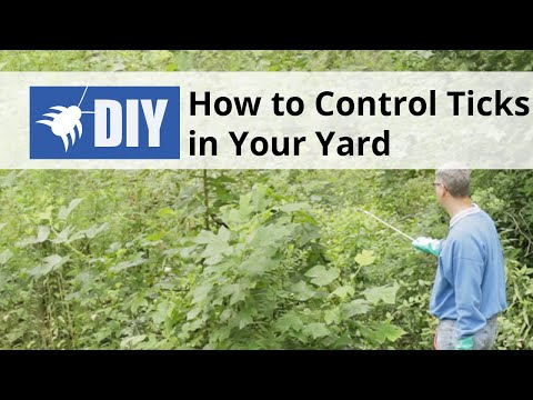 How to Control Ticks in Your Yard - Outdoor Tick Control