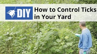 How to Control Ticks in the Yard
