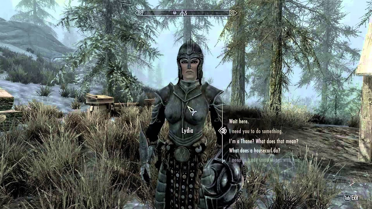 Skyrim Hearthfire: Decking out Windstad ...