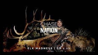 Bow Hunting Elk: DIY Public Land Adventure Elk Bow Hunt - Elk Hunting Madness | S1 E17