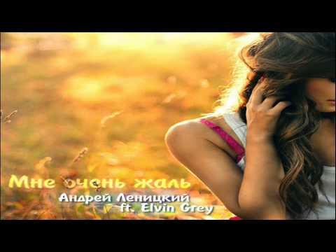 Андрей Леницкий Feat. Elvin Grey - Мне очень жаль (2014 Премьера песни!)