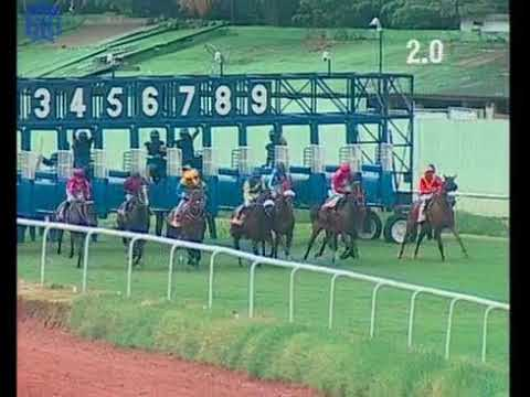 Well Connected with S Zervan up wins The Fillies Championship Stakes Gr 1 2019