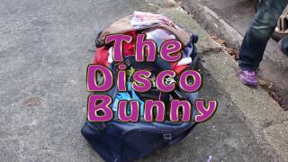The Disco Bunny Documentary