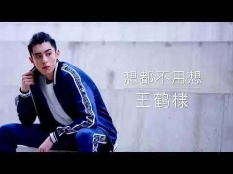 王鹤棣 - 想都不用想 - 电视剧 流星花园 插曲