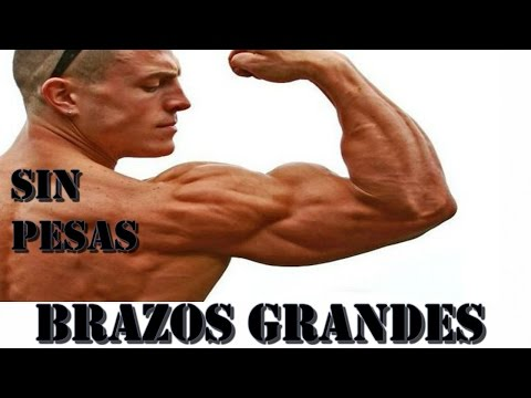 BRAZOS GRANDES con CALISTENIA. Bíceps y Tríceps, entrenamiento y mejores ejercicios.