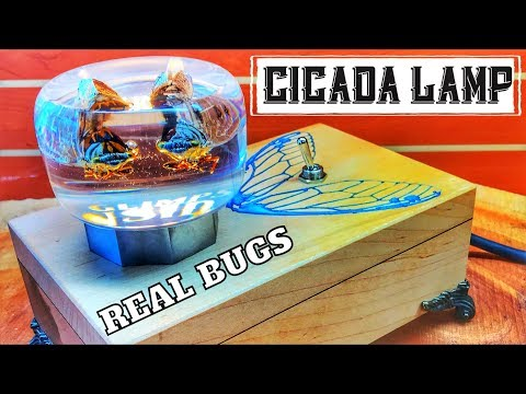 How to Make a Lamp | Resin Art | Bug Lamp | Cicadas in Resin| What? | DIY Project