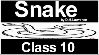 snake by D.H.Lawrence class 10 Explained in Hindi