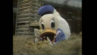 Video Donald Duck's 50th! How were 50 ducks trained to follow Donald down Main Street? So cute! download MP3, 3GP, MP4, WEBM, AVI, FLV Juli 2018
