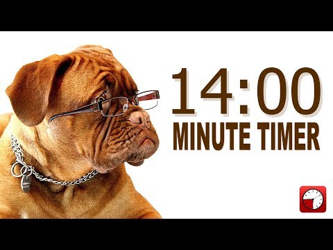 14 Minute Timer for PowerPoint and School - Alarm Sounds with Dog Bark