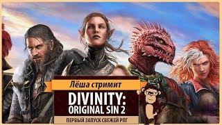 divinity: Original Sin II: первый запуск свежей ролевой игры