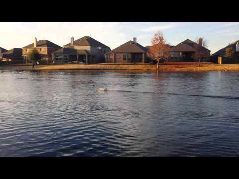 Hobbyking Hydrotek f1 self righting rc boat review