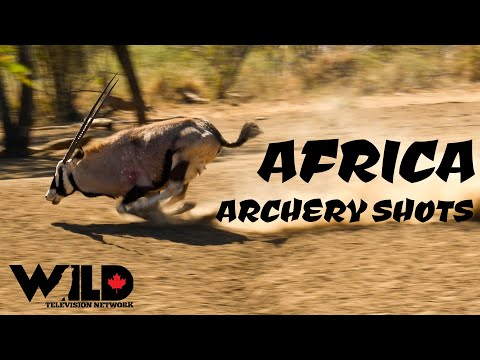 Africa Archery Kill Shots