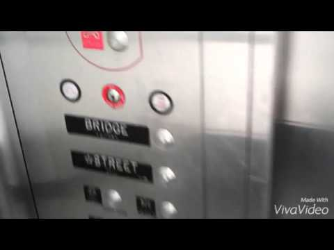 Graeginator Rides 2 Elevator at CTA Cumberland Blue Line Station in Chicago