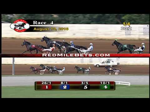 Red Mile Racetrack Race 4 8-13-2016