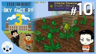 ฟาร์มสุข - มายคราฟ Sky Factory 3 #10