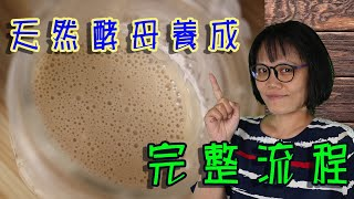 自製天然酵母 天然酵母養成全紀錄 CC字幕請自行開啟.how to make natural yeast,full process. CC subtitle included.