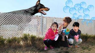 비눗방울을 할수 있는데가 어디일까요? 서은이의 비눗방울 놀이 요정 물고기 비눗방울 Bubbles away from Dogs Seoeun Story