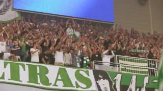 Hammarby Ultras Söderort  kommer alltid va' vårt!