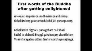 The Buddha's first words after enlightenment [E] -S.N.GOENKA