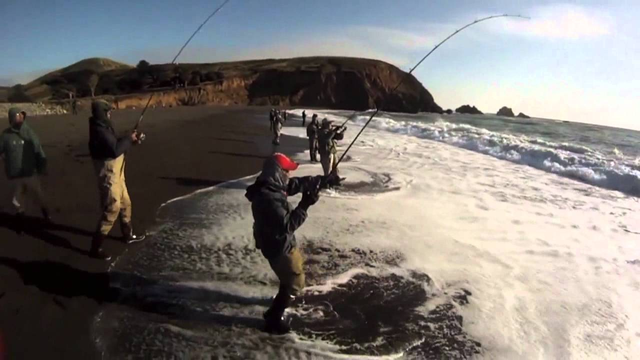 extreme saltwater surf fishing for striped bass,,,using a dobyns, Reel Combo