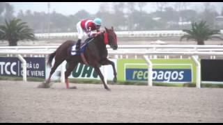 Vidéo de la course PMU POTRI CONDESA (2007)