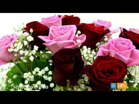 Букет Ласточке - букет любимой на 8 марта. Заказать цветы - SendFlowers.uaиз YouTube · С высокой четкостью · Длительность: 30 с  · Просмотры: более 2.000 · отправлено: 28.02.2014 · кем отправлено: UFL - онлайн сервис доставки цветов
