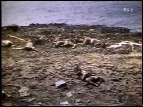 カラー版 第二次世界大戦 最終回 太平洋での戦い