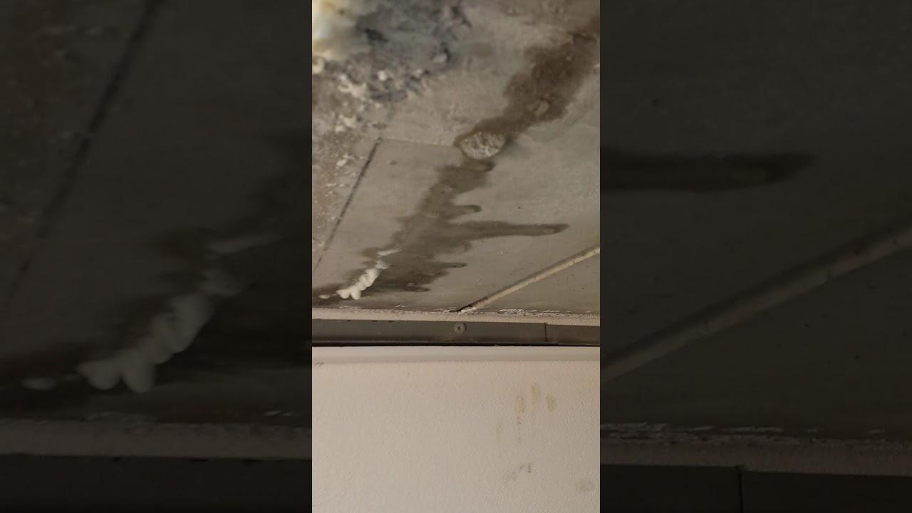 Iniezione resine per larresto di infiltrazioni dacqua - YouTube