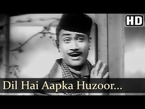 Dil Hai Aapka Hujur - Dev Anand - Madhubala - Jaali Note - Bollywood Old Songs - O.P