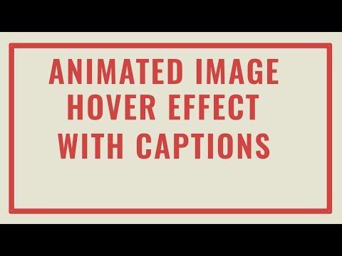 CSS3 Animated Text Overlay on Hover | Animated Image Hover Effects with Captions