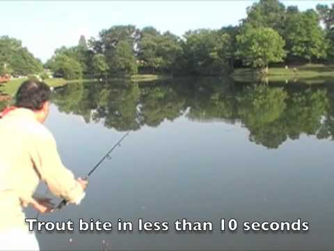 60 Second Trout Fishing System *ILLEGAL IN SOME AREAS*