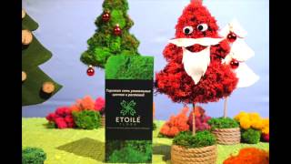 Стабилизированный мох ягель в Украине: Этуаль Флора(, 2016-12-07T11:48:23.000Z)