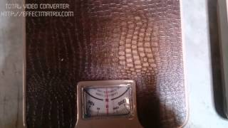 Newton Meter Scales