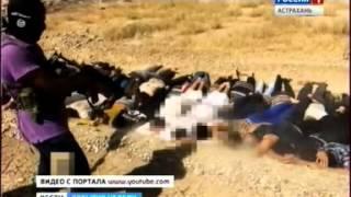 Доверчивый мусульманин или как ИГИЛ вербует «пушечное мясо»