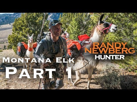 2018 Montana General Elk Hunt with Randy Newberg (Part 1)