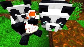 10 Fakten über den Minecraft Panda! Minecraft 1.14