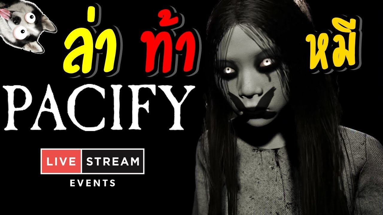 🔴 Live - Pacify - ล่าท้าหมี