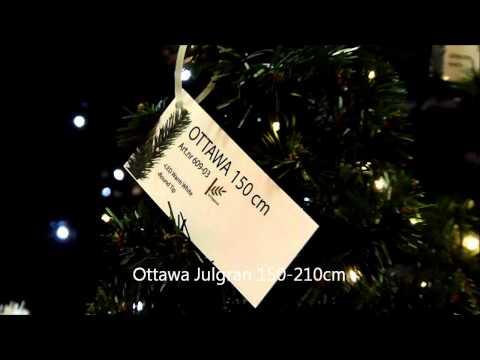 Star Trading Julgran Ottawa LED