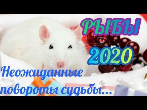 РЫБЫ - Таро прогноз на 2020 год.