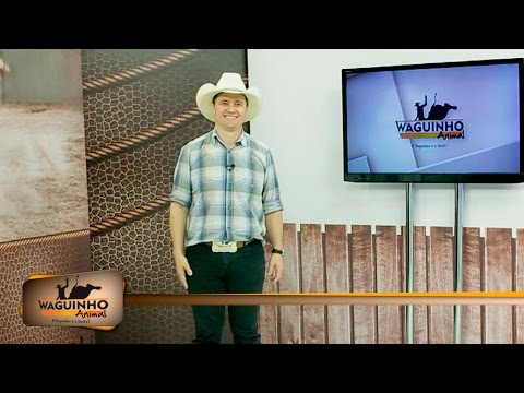 Waguinho Animal 23/07/16 na íntegra