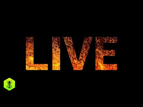Learn about music production LIVE