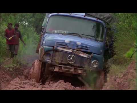 MADAGASCAR - Le VIEUX TITAN
