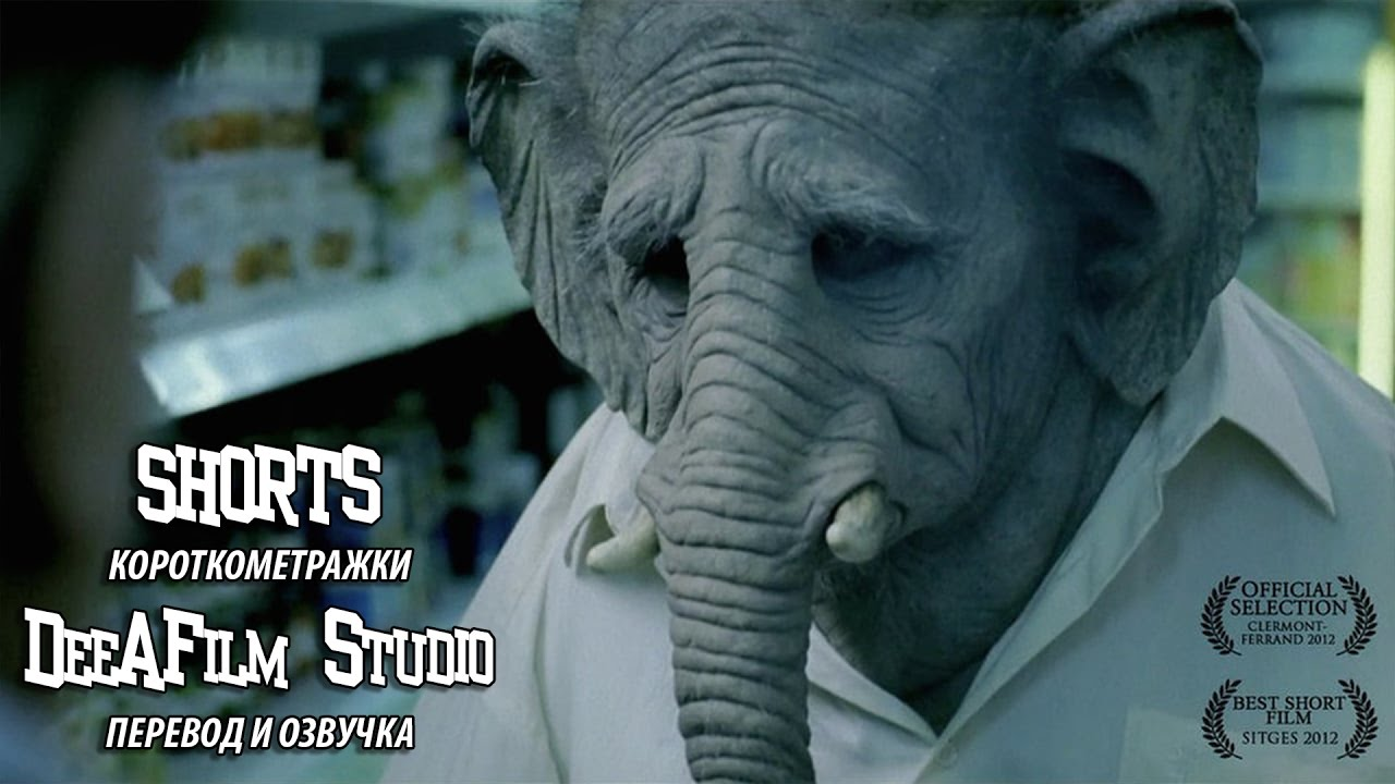 Короткометражный фильм «Слон» | Озвучка DeeAFilm