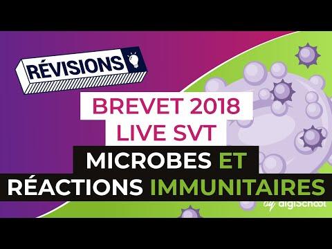 Brevet 2018 - Révisions de SVT : Microbes et réactions immunitaires
