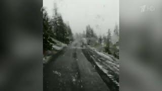 В Магаданской области выпал снег.