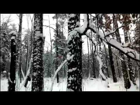 Зима. Крестьянин торжествуя...
