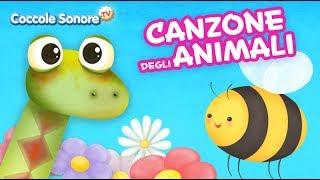 Canzone degli animali + altre canzoncine - Canzoni per bambini di Coccole Sonore